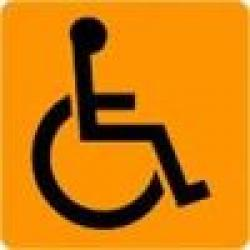 Disabili[1]